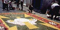 Улицу итальянского города выложат цветочными лепестками