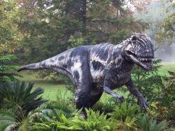 """В Китае найдена \""""тропа динозавров\"""""""