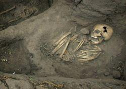 В Колумбии обнаружено более 1000 древних захоронений