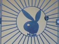 Playboy создаст свой виртуальный мир