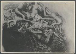 Найдены новые фотографии, снятые сразу после бомбардировки Хиросимы (фото)