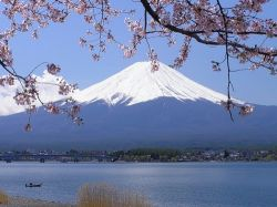 Япония через полвека избавится от парниковых газов