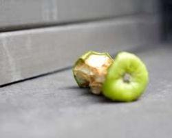 Почему свалки забиты едой?