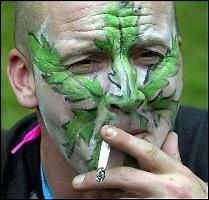 Курение марихуаны поражает печень