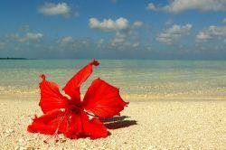 """Самые \""""райские\"""" места по мнению британского издания Economist"""