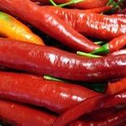 Углеродные нанотрубки измерили остроту соуса чили