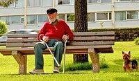Пожилые граждане Великобритании предпочитают адреналин и приключения тихому пляжному отдыху