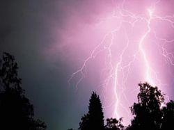 В Воронеже молния ударила в дерево, под которым прятались подростки: 11 пострадавших