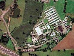Британский грабитель вернулся в тюрьму за комфортом