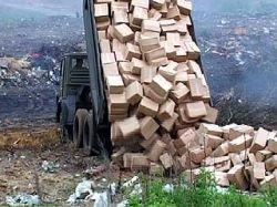 Воронежские наркополицейские уничтожили 35 тонн мака