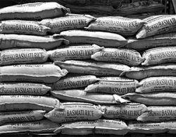 Нынешний продовольственный кризис пока далек от завершения