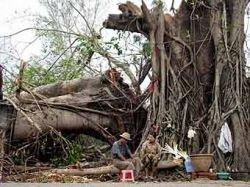 ООН посчитала, что в Мьянме пострадали 2,5 млн. человек