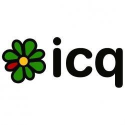 Чиновникам Ленобласти отключили ICQ