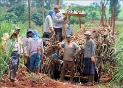 Экономисты ООН снизили прогноз роста мирового производства