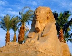 10 самых странных страховых случаев, которые приключились с туристами