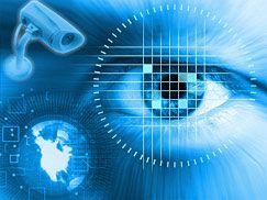 В паспорта будущего будут встроены ультратонкие дисплеи