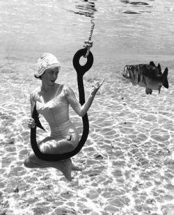 Жизнь под водой (фото)