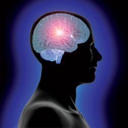 Лишенный сна мозг отключается самопроизвольно
