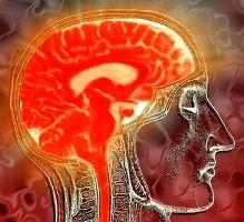 Ученые обнаружили участки мозга, отвечающие за пристрастие к наркотикам