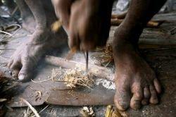 Жизнь племени Korowai (фото)