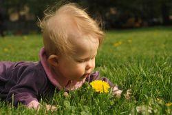 Британские женщины получили право рожать детей без отца