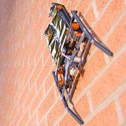Американские ученые создали робота, двигающегося по стенам с помощью электростатики