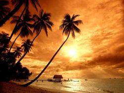 Пляжи Гоа стремительно пустеют