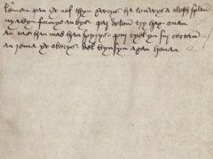 У мертвого корнского языка появились нормы правописания