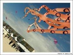 Фестиваль воздушных змеев (фото)