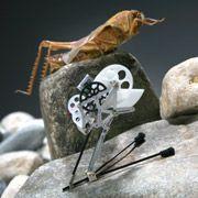 Робот-кузнечик прыгает подобно саранче