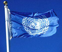 ООН обвинила Россию в сбитом самолете