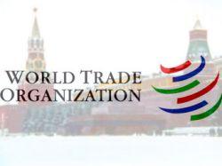 Грузия выдвинула условие согласия на вступление России в ВТО