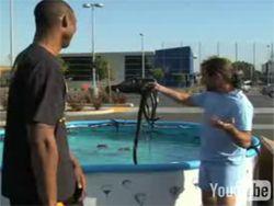 Прыжок через бассейн со змеями