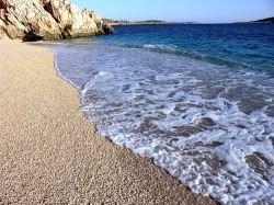 Туроператоры: акул у турецкого побережья не обнаружено