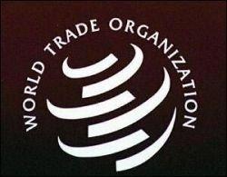 США подали жалобу в ВТО на Евросоюз за ввозные пошлины на ИТ-оборудование