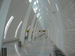 Аэропорт Копенгагена стал полем битвы