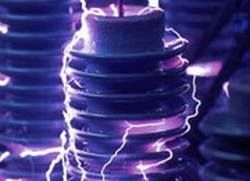 В Японии запущена электростанция, работающая на биомассе