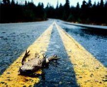Как избежать подставы на дороге