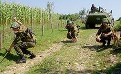 Более 140 учений проведут Сухопутные войска России до конца года