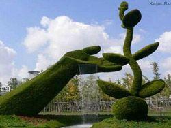 Творения шанхайских садовников
