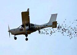 Индонезийский бизнесмен сбросил с самолета 11 тысяч долларов