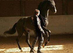 Александр Невзоров: «Лошадь распятая и воскресшая»