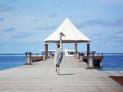 Журнал Travel + Leisure составил рейтинг лучших новых отелей