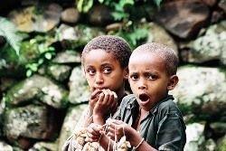 Около 4,5 млн жителей Эфиопии нуждаются в срочной гуманитарной помощи