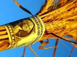 На решение продовольственного кризиса нужно до 20 млрд долларов в год