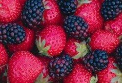 Фрукты, овощи и чай помогут уберечь лёгкие курильщиков от рака