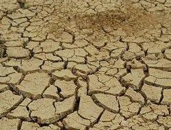 Апокалипсис случится из-за нехватки воды