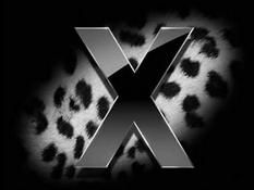 "Apple Mac OS X 10.6 будет названа ""Snow Leopard"""