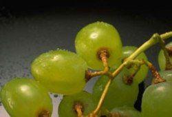 Виноградный сок позволяет сохранить хорошую память в пожилом возрасте