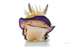 Интересные водяные зверьки